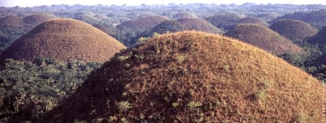 See mountain-sized Hershey's kisses at Chocolate Hills, Bohol